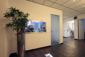 De deur naar de wachtkamer met daarnaast het zee aquarium